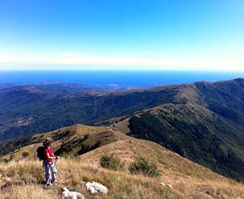 Primavera all'improvviso in Liguria